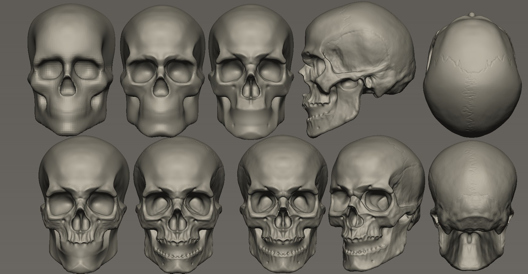 ¿Real o Pixologic ZBrush?