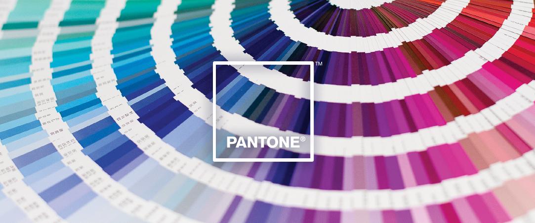 ¿Sabes cuál es el color favorito del mundo?