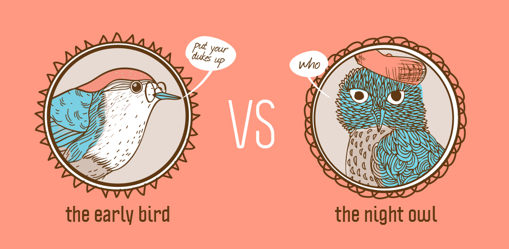 Early bird vs Night Owl: Consejos de Estudio